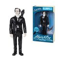 Action Figure - Edgar Allan Poe