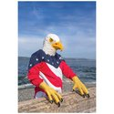 Eagle Talons - Set Of 2