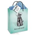 Gift Bag - Get Well