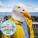 Head Mask - Seagull